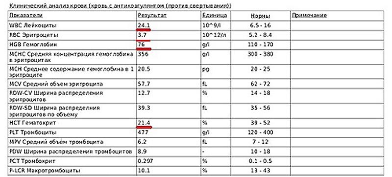 Рис 2. Клинический анализ крови